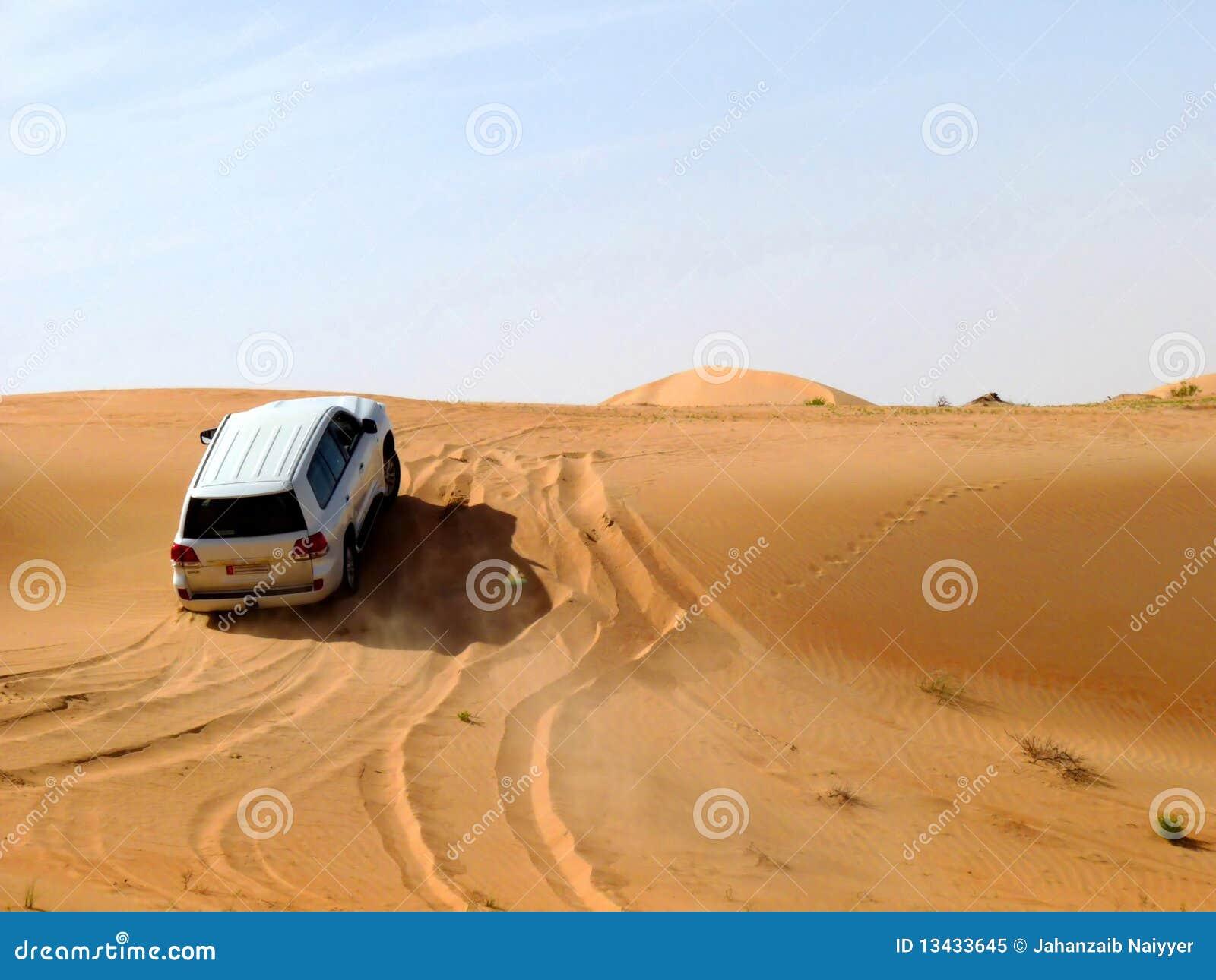 Safari del desierto