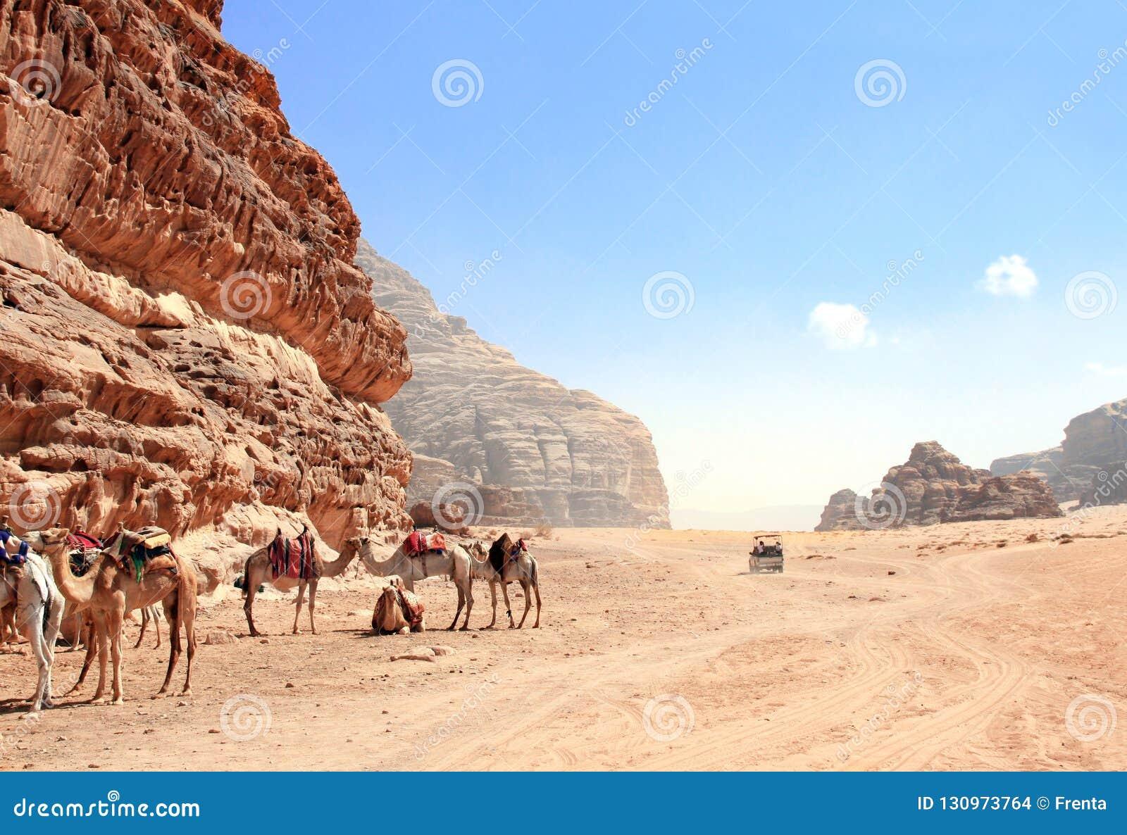 Safari del jeep en el desierto de Wadi Rum, Jordania