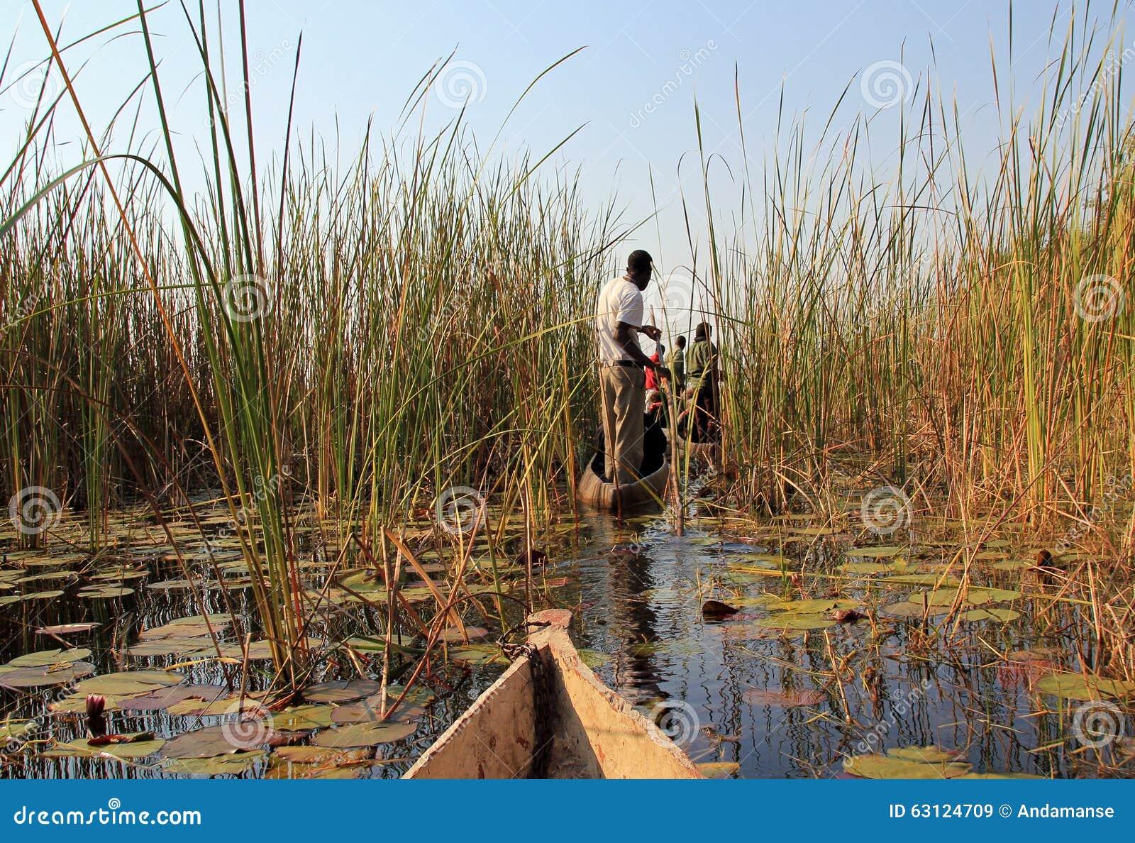 Safari di Mokoro