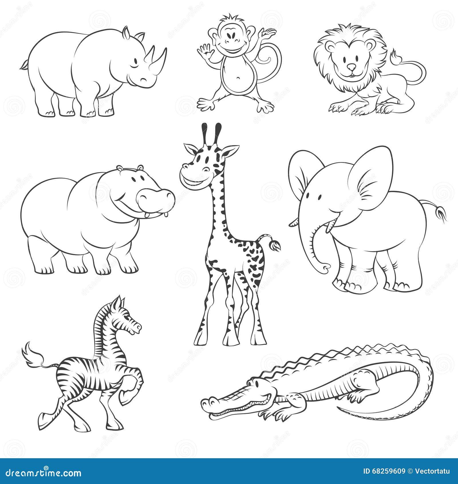 Line Art Jungle Animals : Safari and jungle vector animals stock image