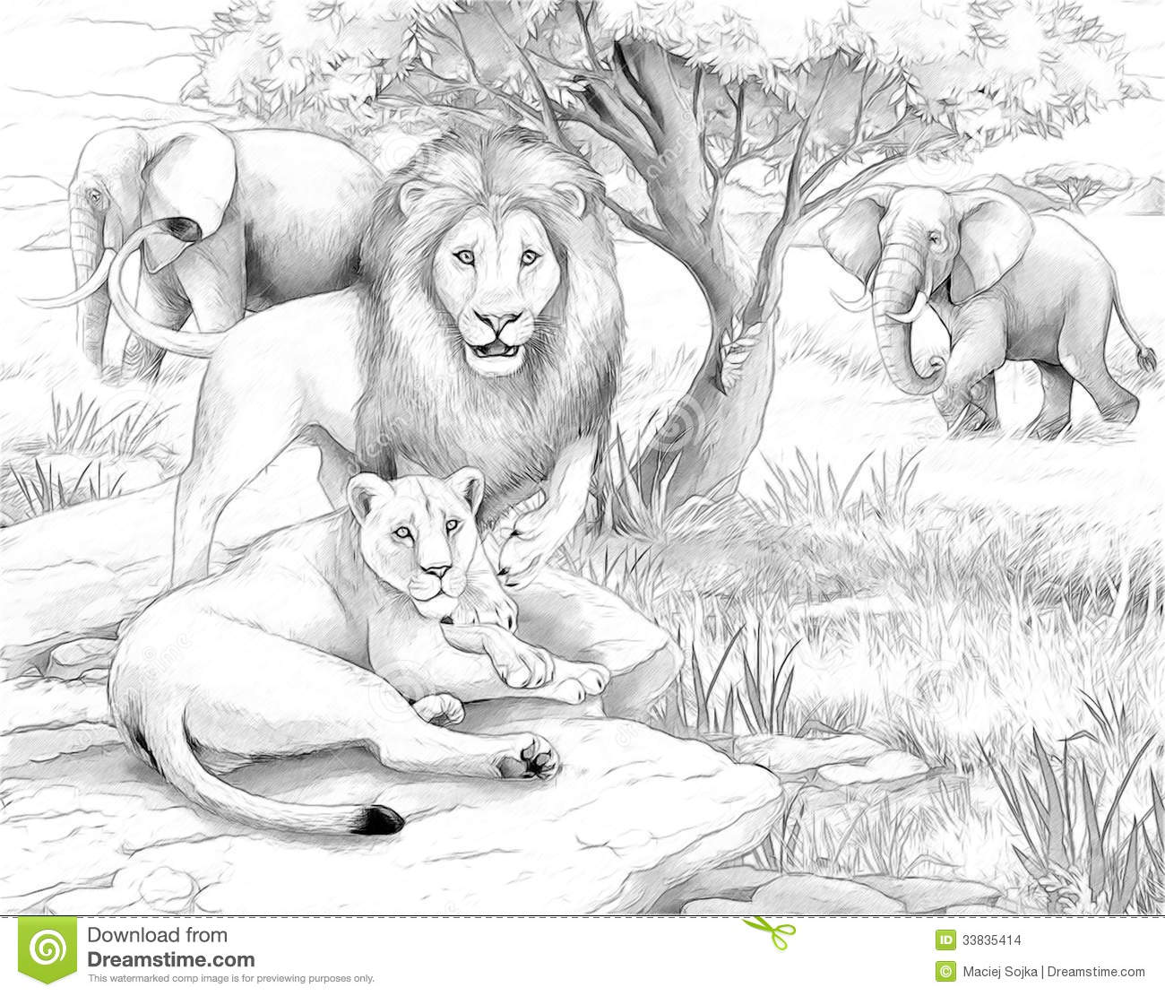 safari lions and elephants stock photo image 33834980