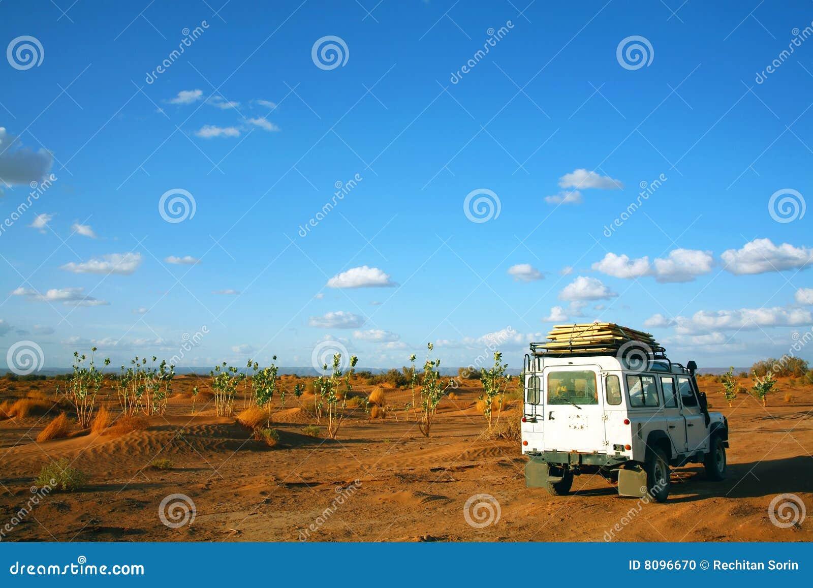 Safari in Sahara Desert