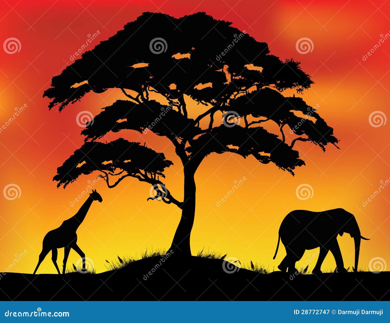 Baby elephant silhouette