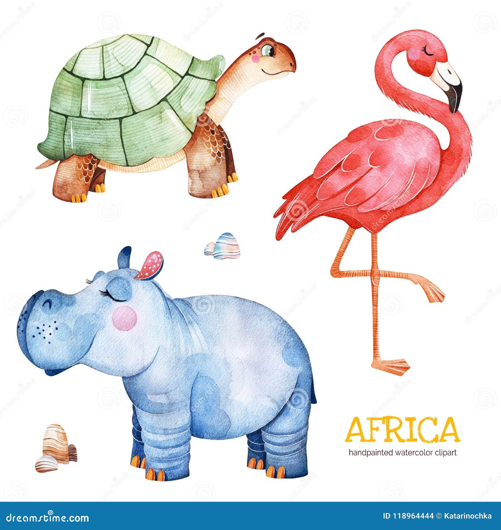 Safariinzameling met flamingo, hippo, schildpad, stenen