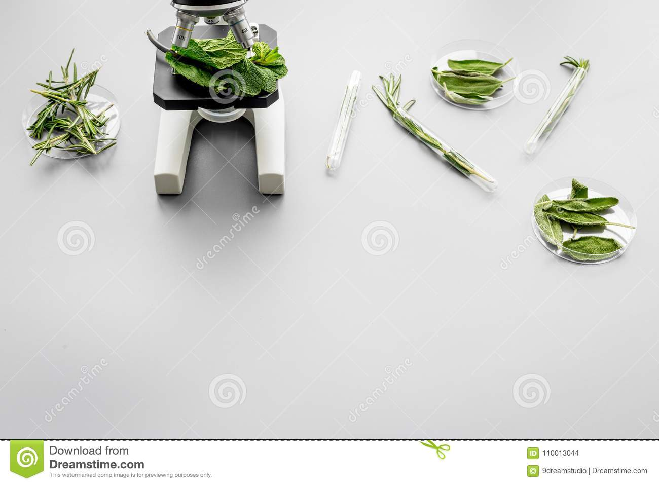 Safety food. Laboratory for food analysis. Herbs, greens under microscope on grey background top view copy space
