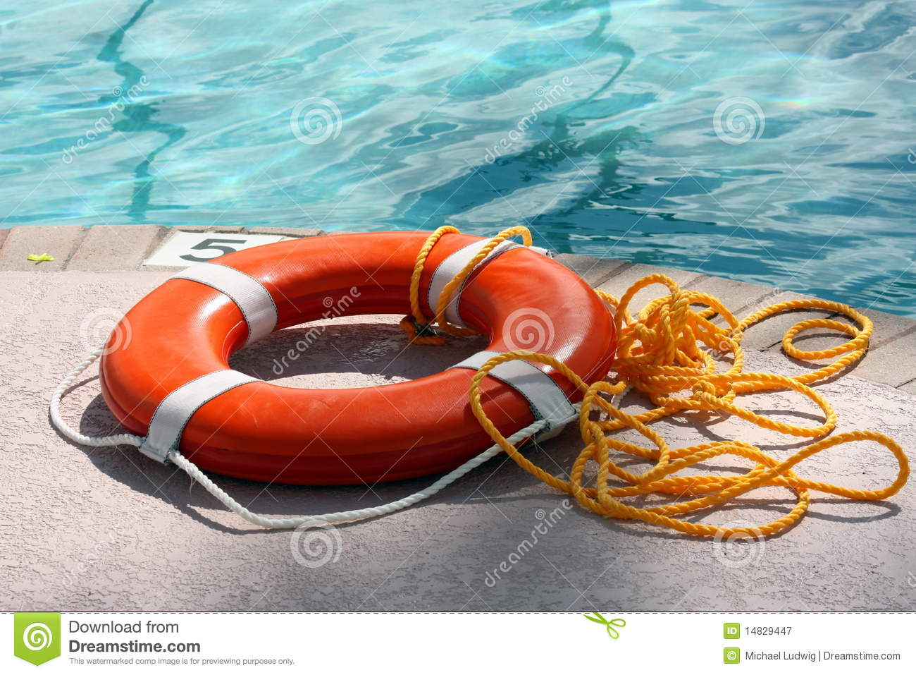 Pool Life Ring With Rope