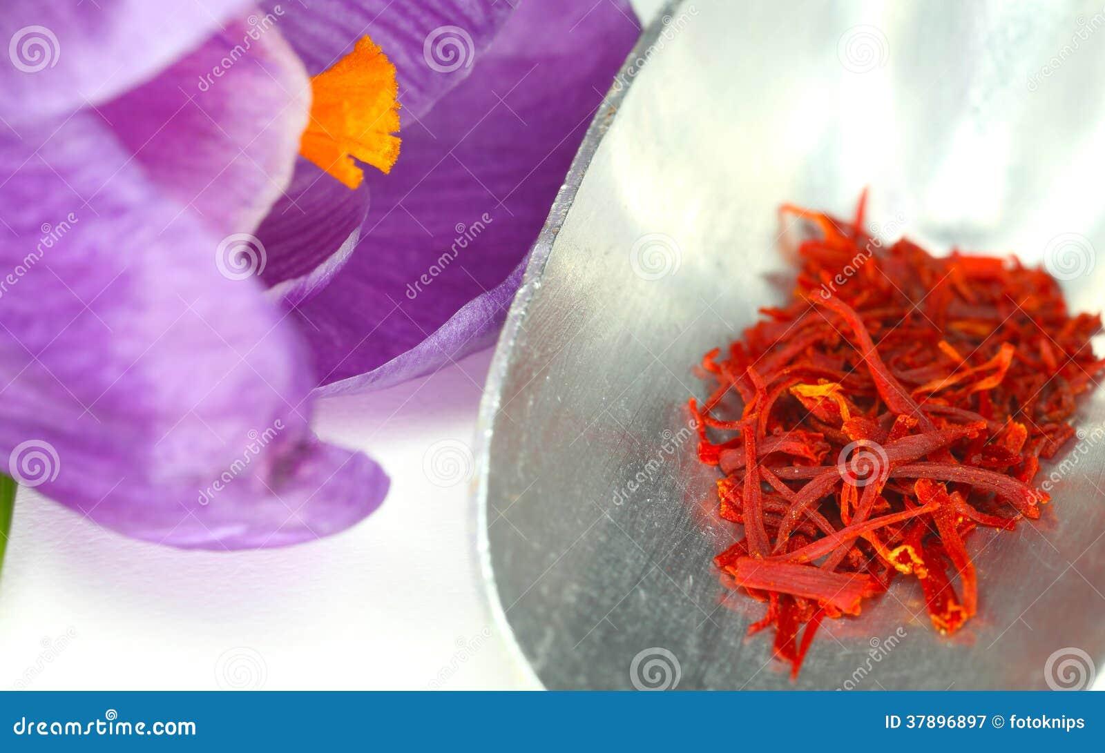 Saffraan en krokusbloem