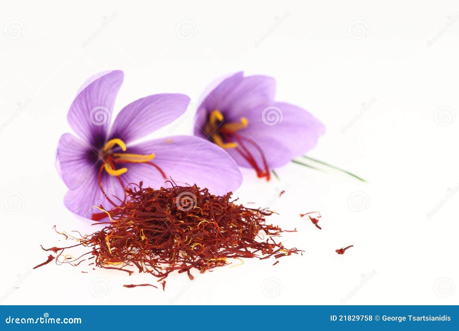 Saffron Spice And Saffron Flowers Royalty Free Stock Photos - Image ...