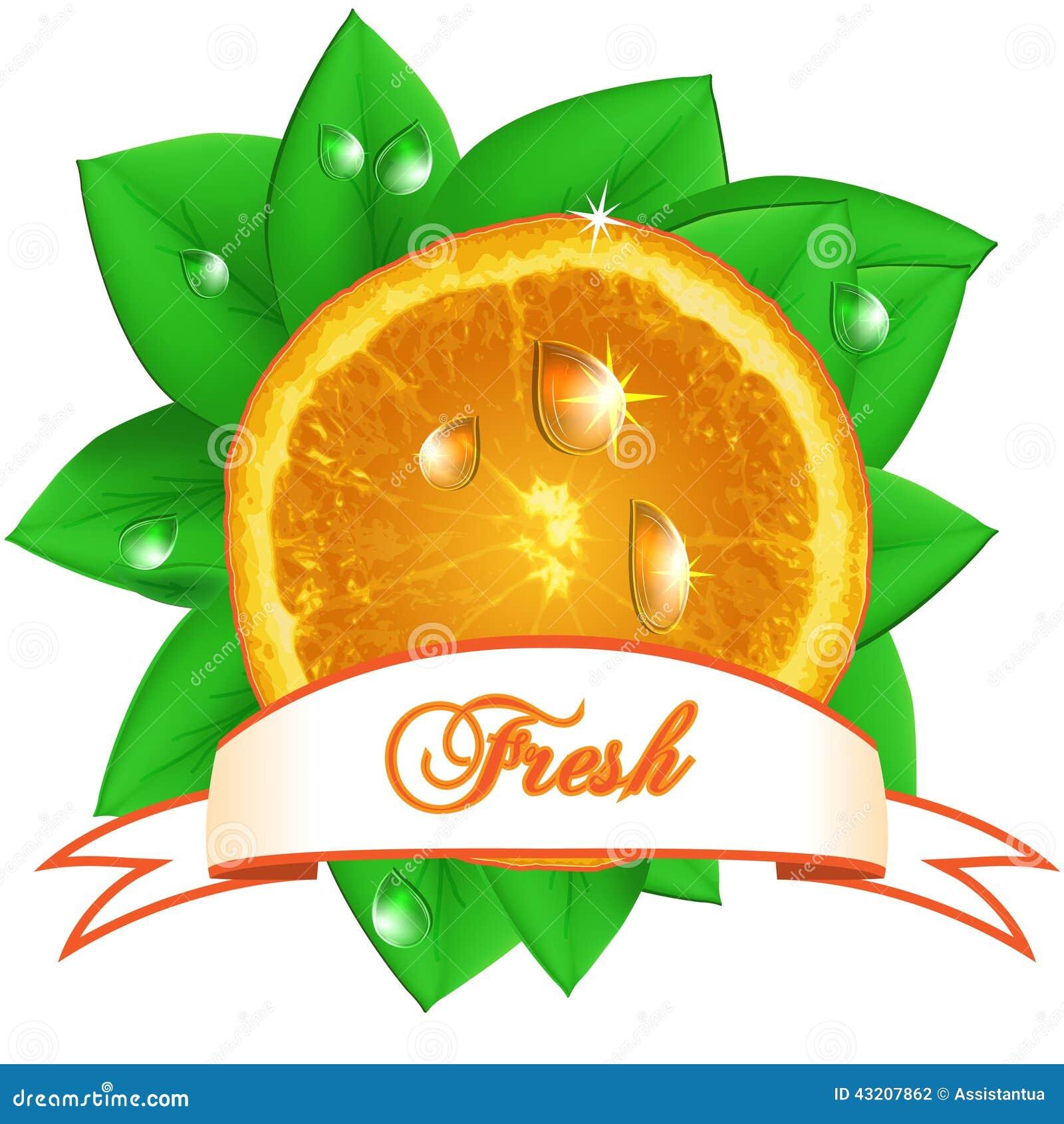 Download Saftig Ny Apelsin Med Sidor, Droppar Och Bandet På Vit Backg Vektor Illustrationer - Illustration av objekt, fruktsaft: 43207862