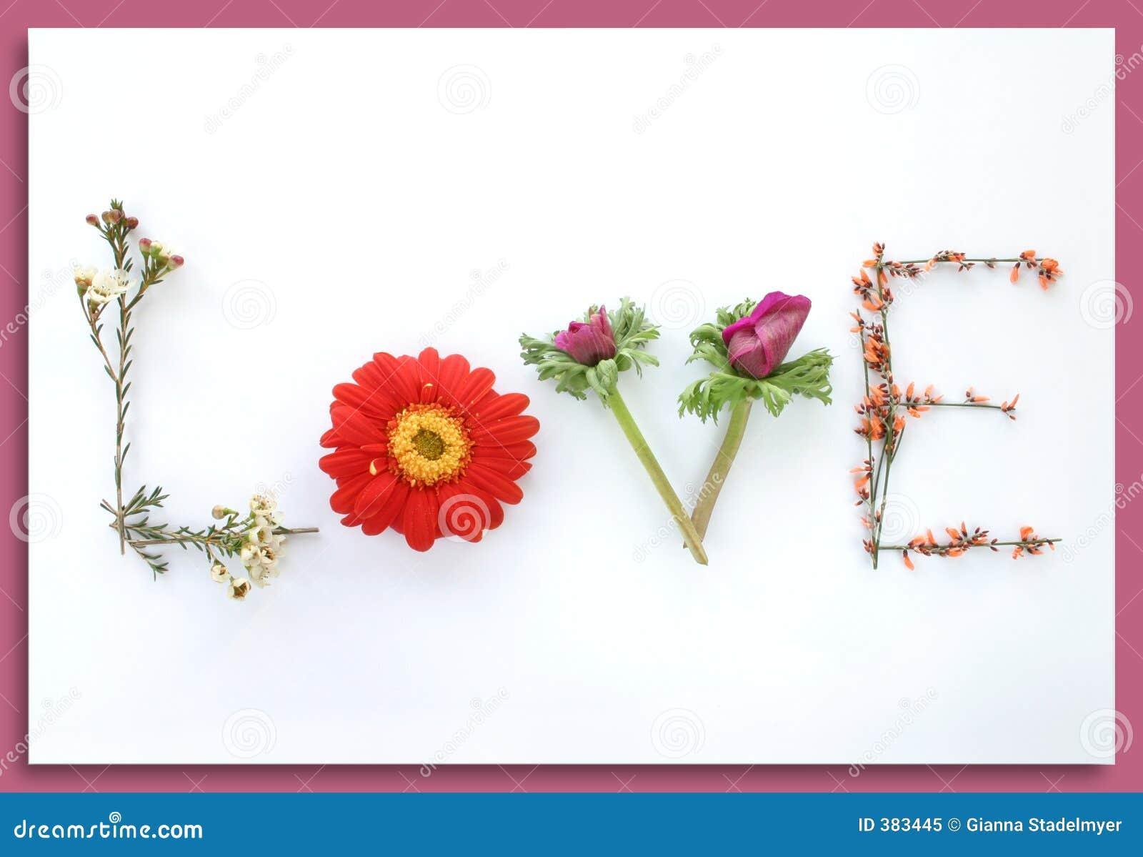 Sagen Sie Sie Mit Blumen Liebe Stockbild Bild Von Romanze