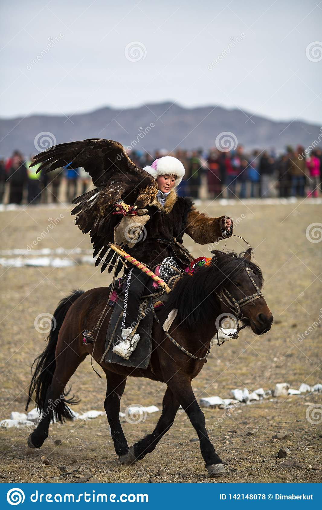 Berkutchi - Kazakh hunter with Golden eagle, while hunting to the hare in desert mountain of Western Mongolia