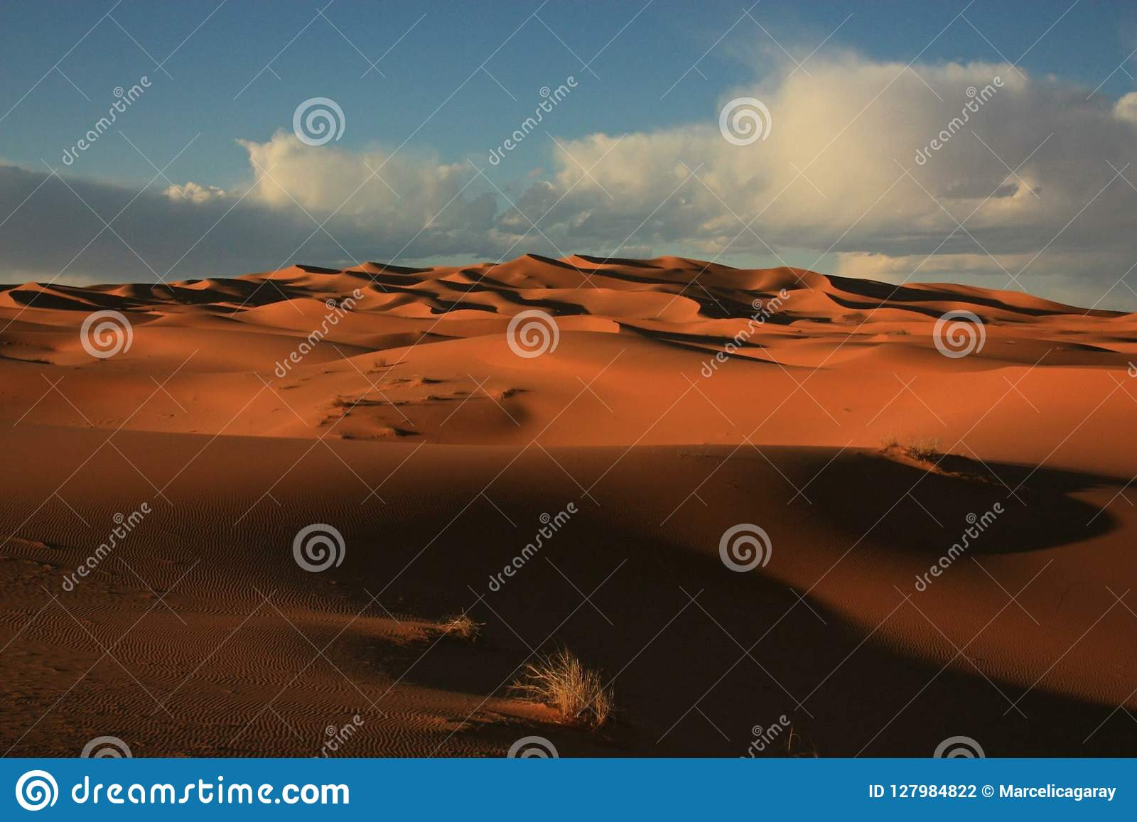 Sahara Desert Merzouga Morocco