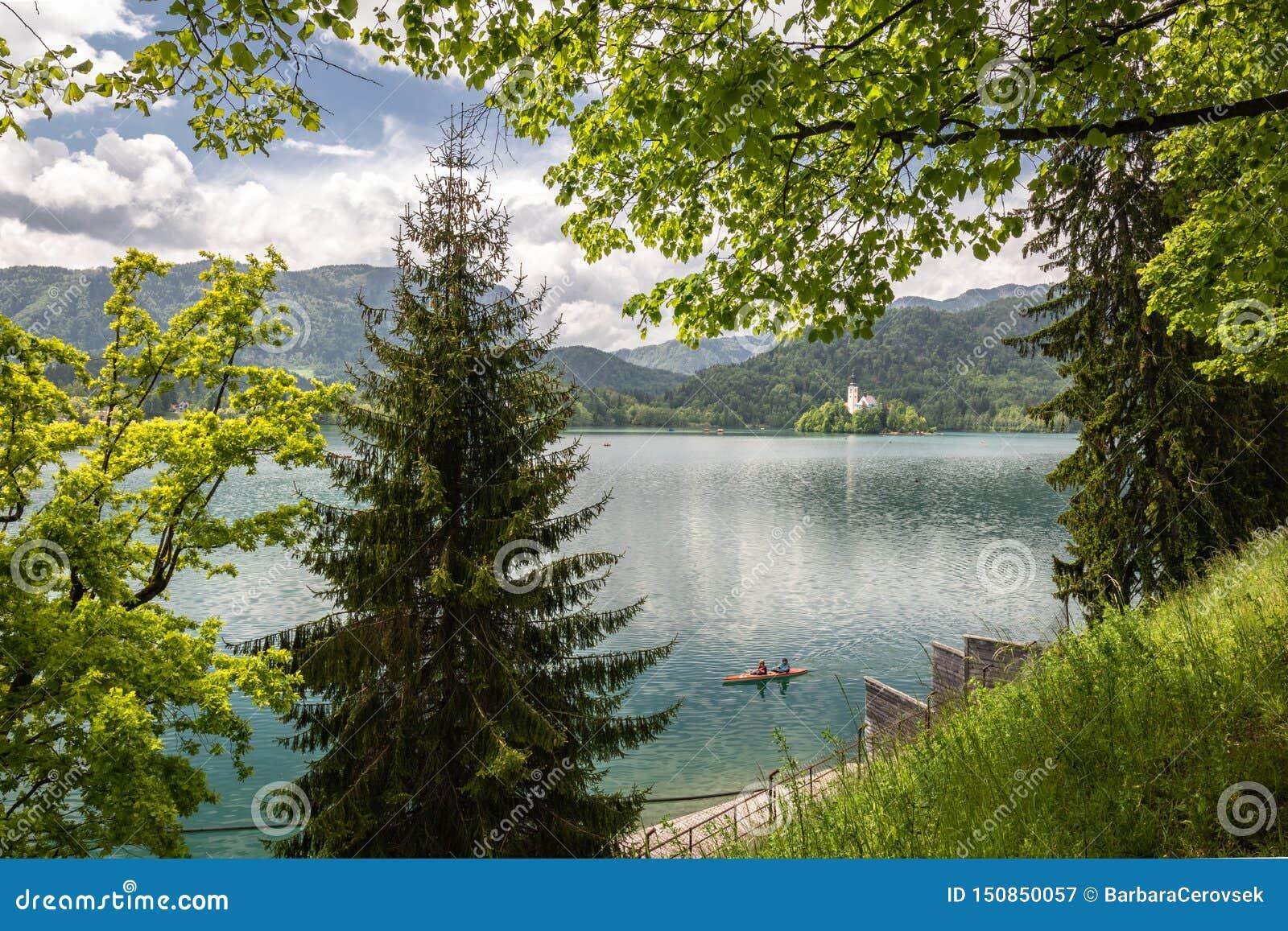 Saigné, la Slovénie - 18 mai 2019 : Touristes heureux ramant dans le bateau plat en bois ayant l amusement sur le lac saigné en c