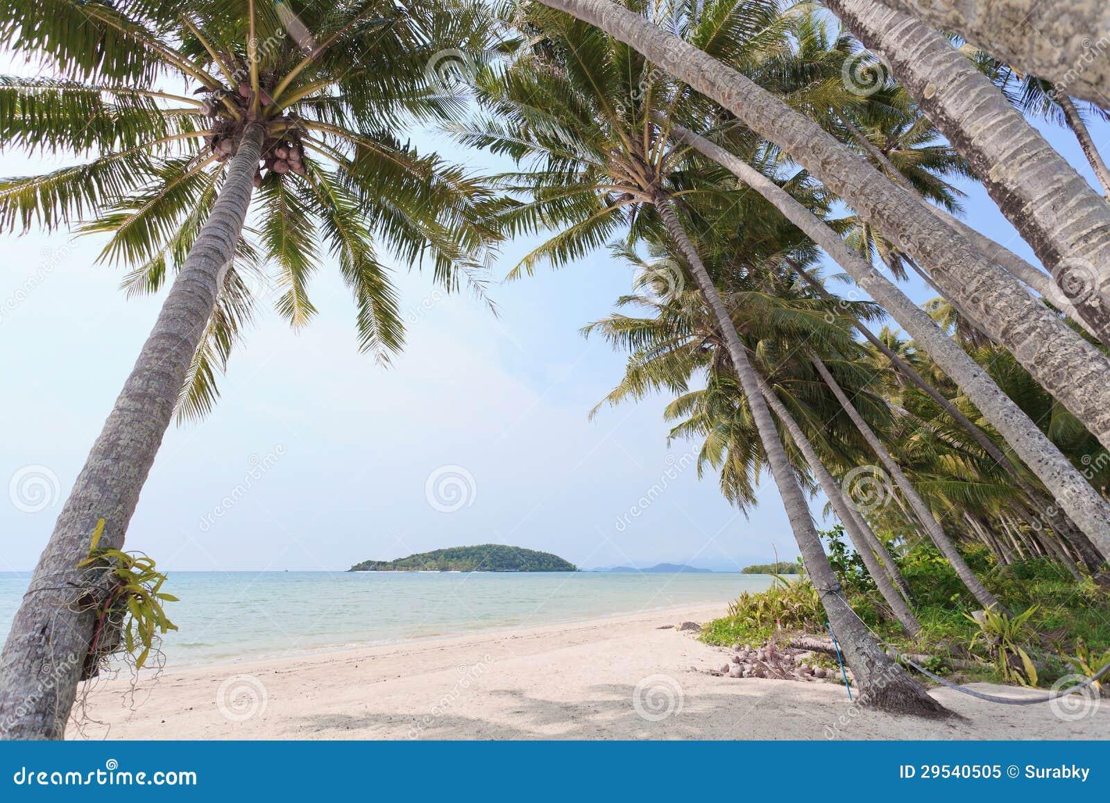 Sailer na praia
