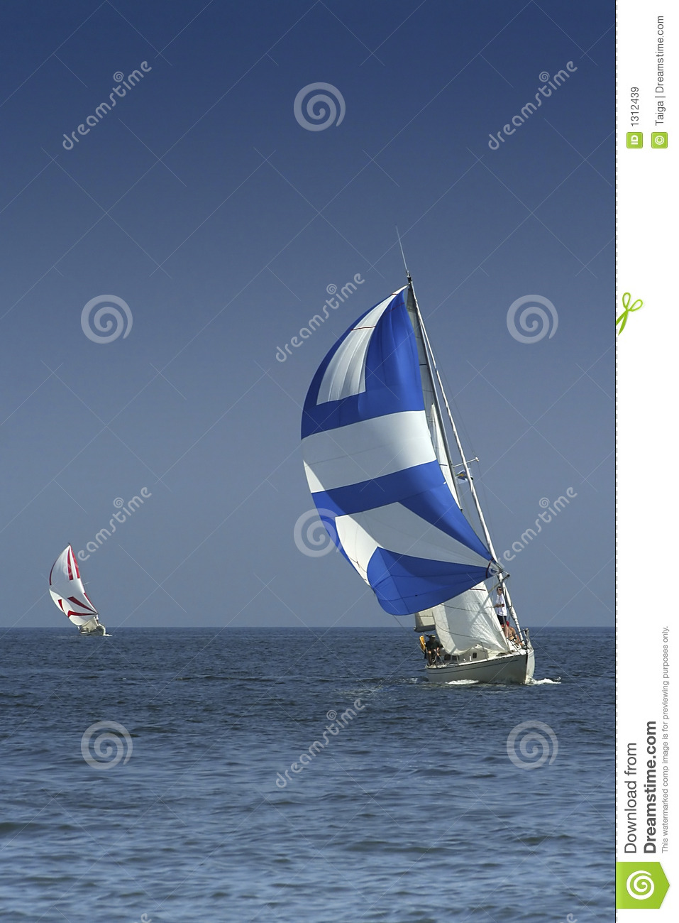 Sailing. The winner and losed