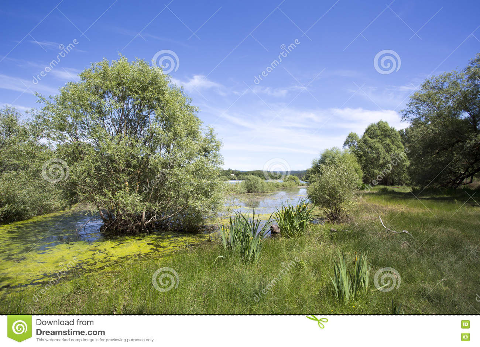 Saint Cassien do lago