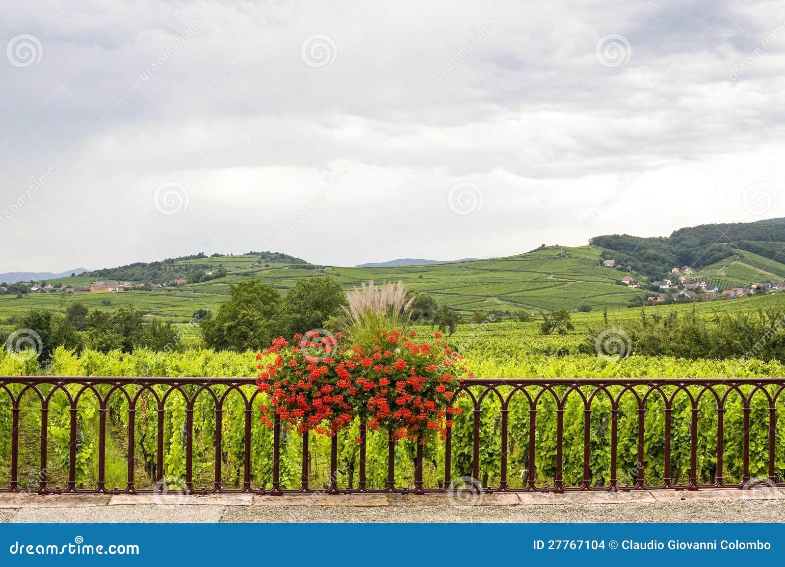 Saint-Hippolyte (Alsace) - horizontal