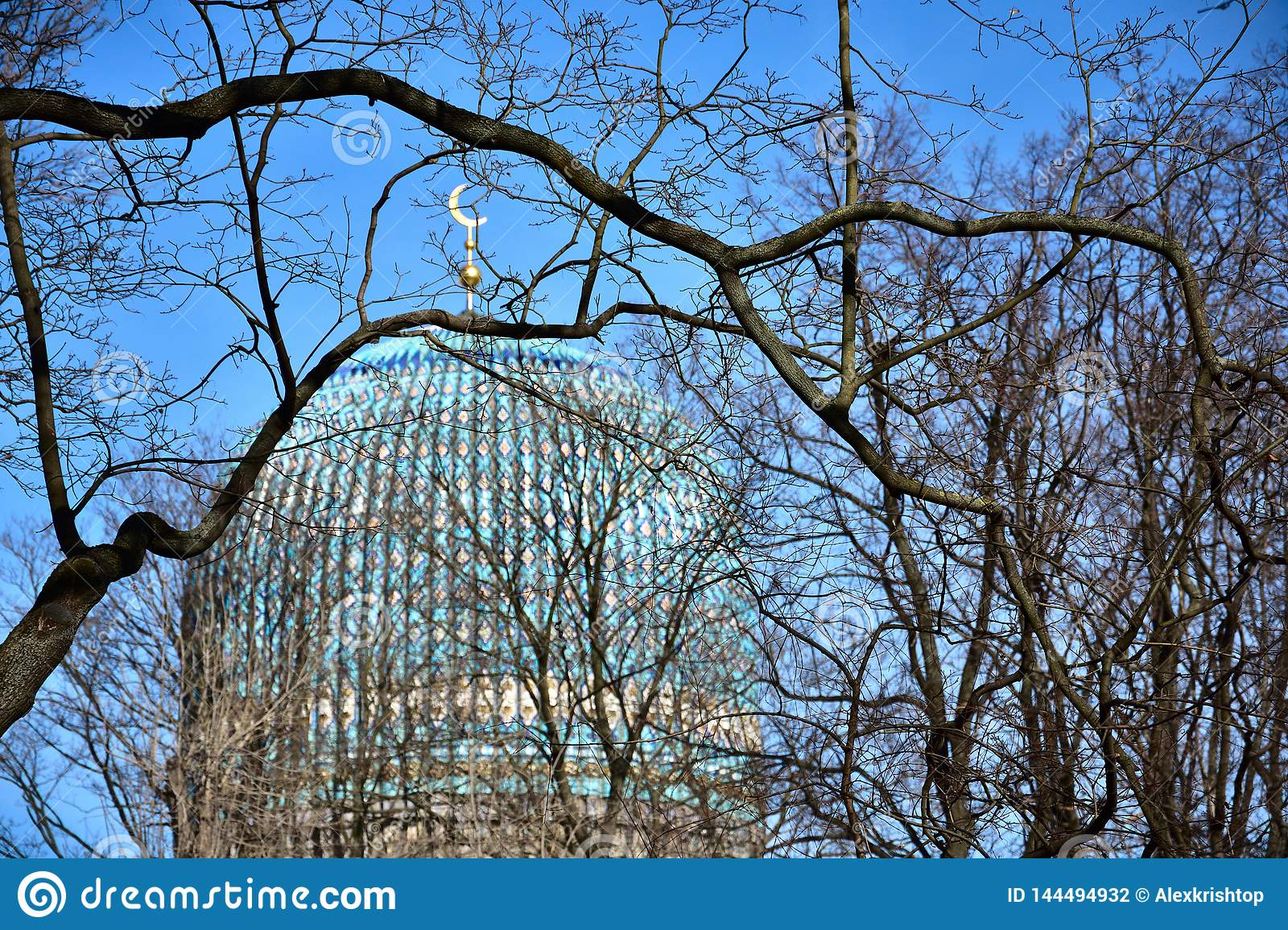 The Saint Petersburg Mosque, view through branches in the spring