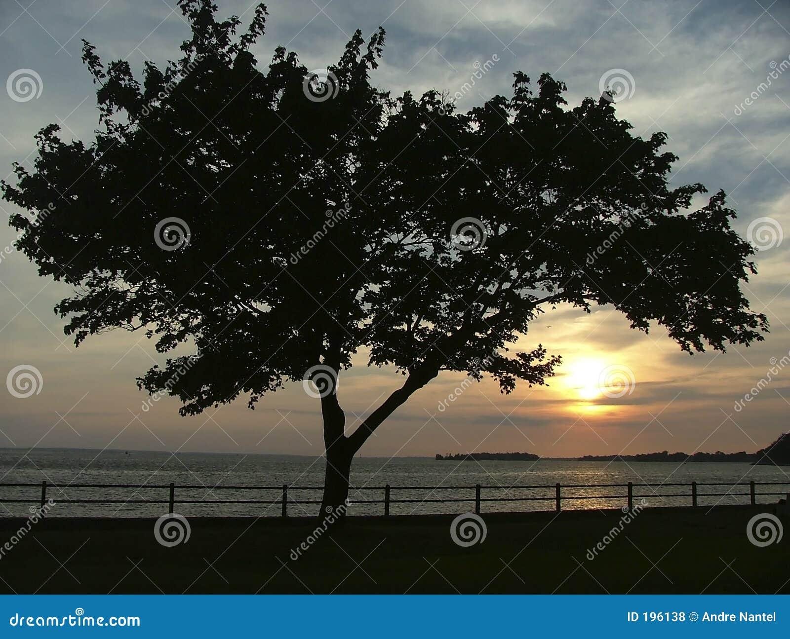 Saisie du coucher du soleil