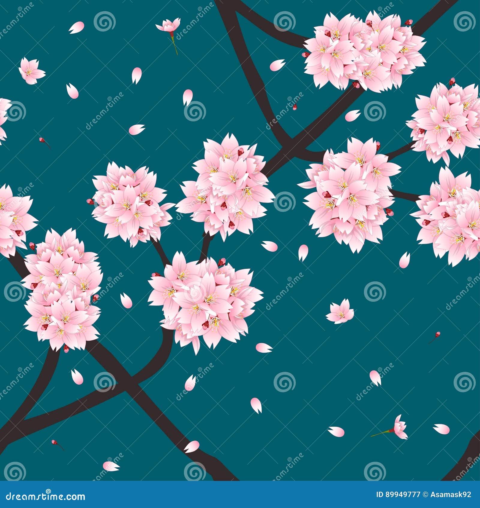 Sakura Cherry Blossom Flower su verde Teal Background dell indaco