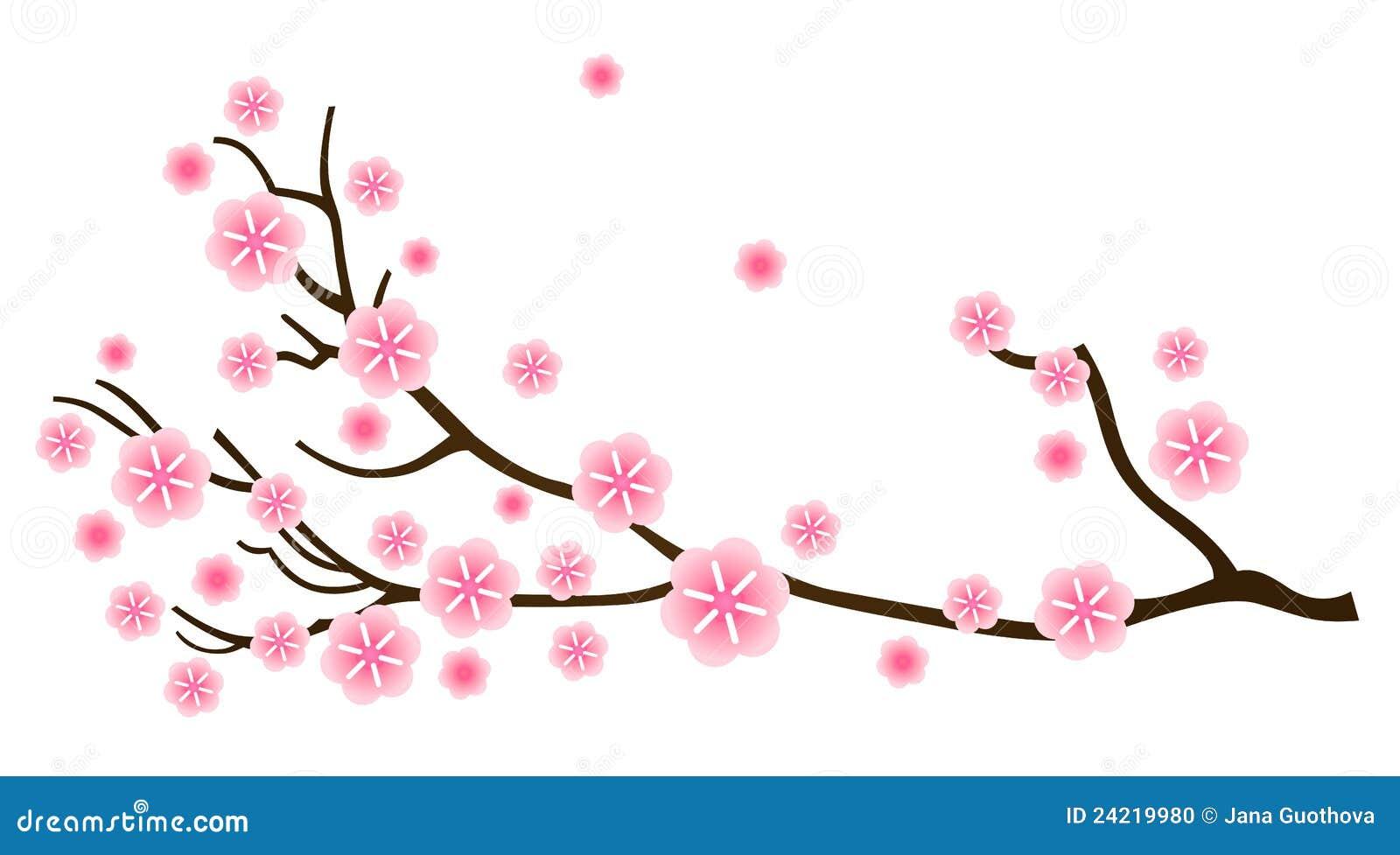 spring branch hispanic single men Hispanic women entrepreneurs https: men and women 35yrs and up ne sa born again single meetup bulverde/spring branch networking meetup.
