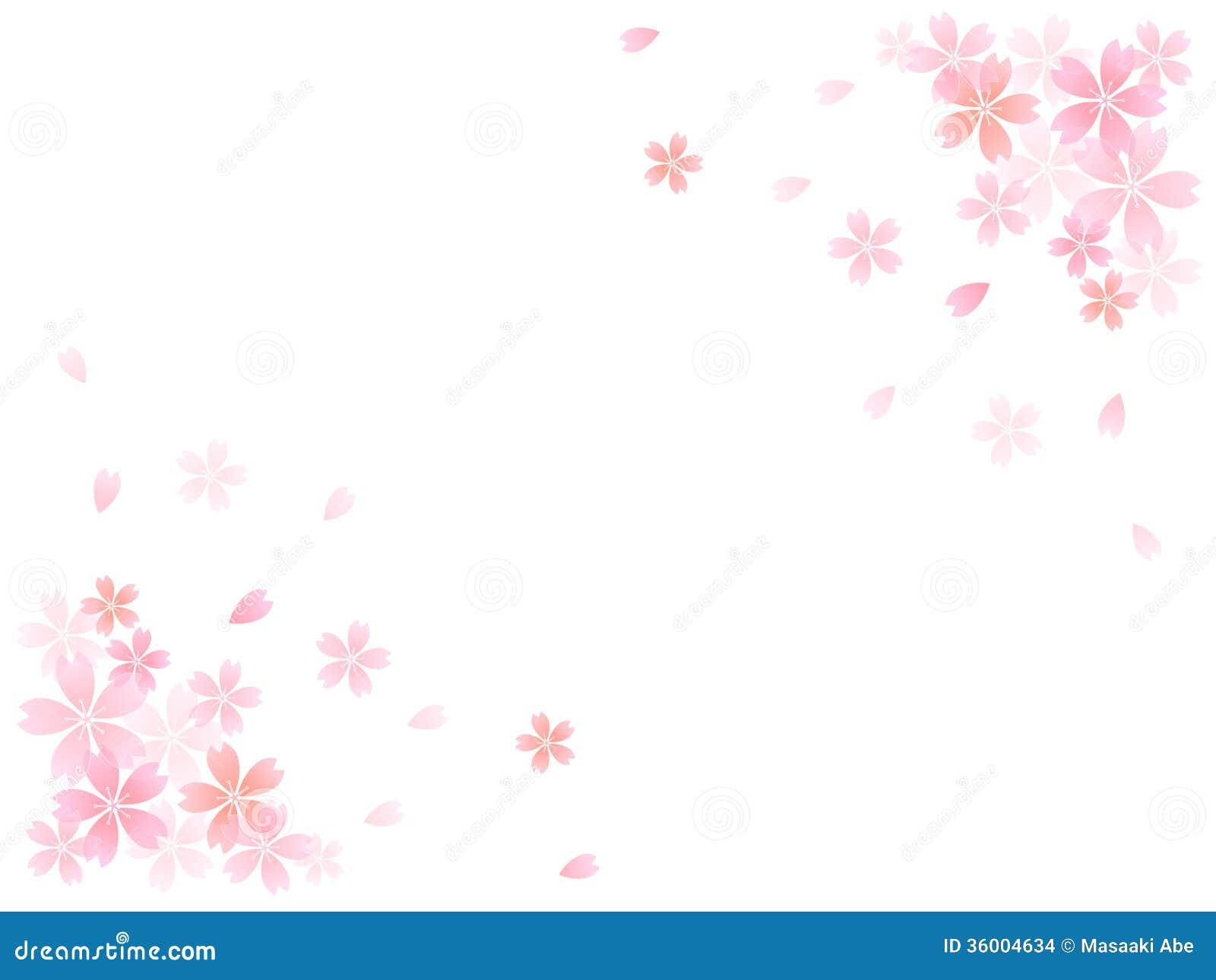 sakura cherry tree background stock images image 36004634 cherry blossoms clip art black and white cherry blossoms clip art black and white