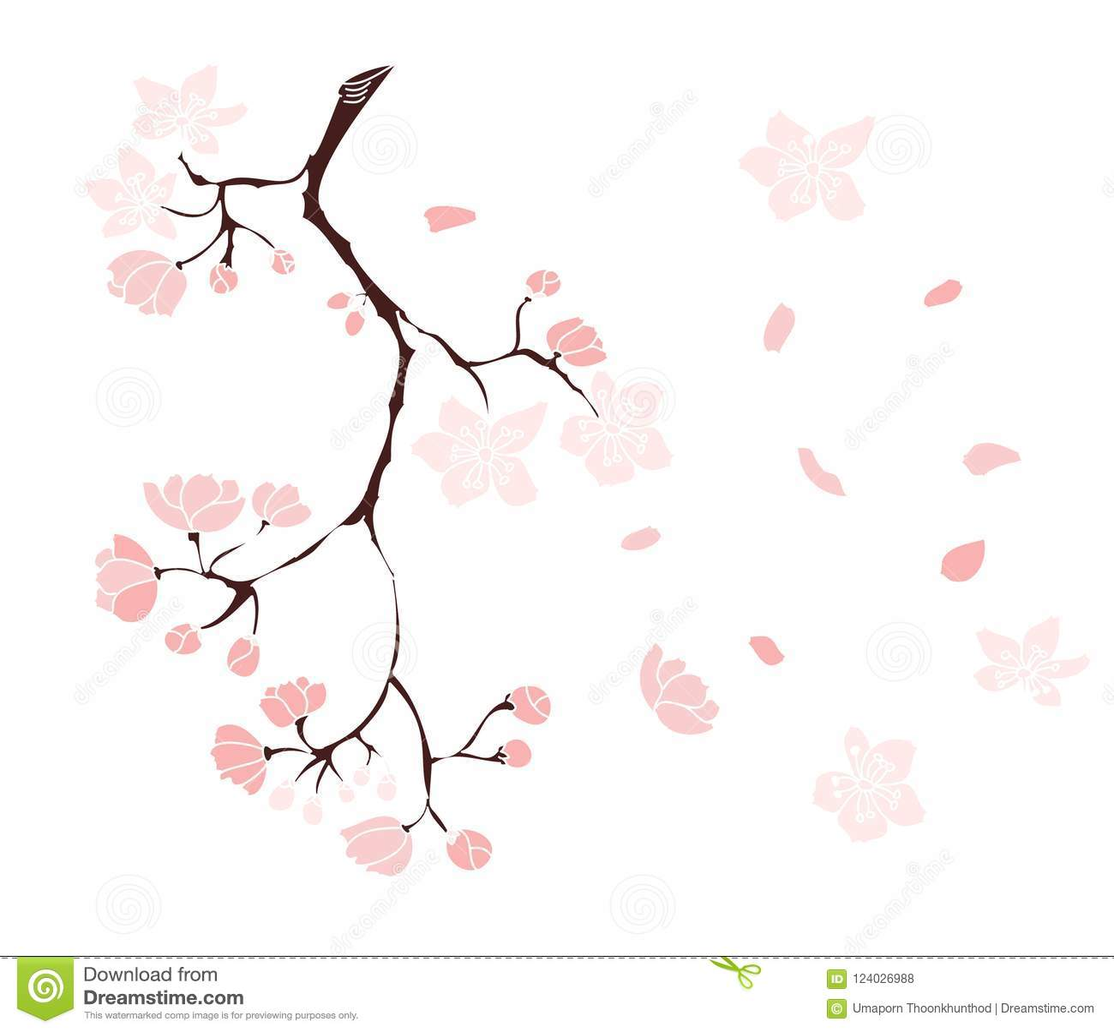 Sakura Flower For Printing On Paper Stock Vector Illustration Of