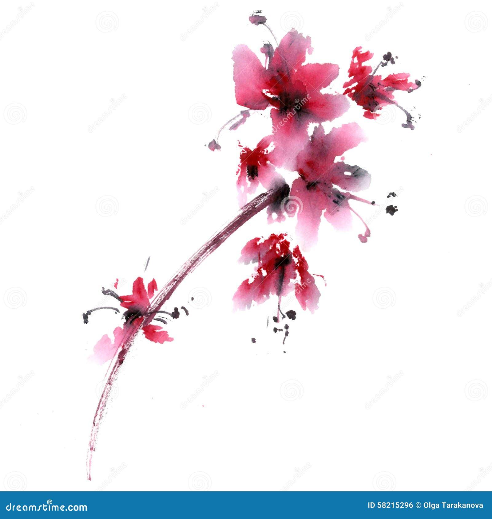 Sakura Flower Stock Illustration Image 58215296