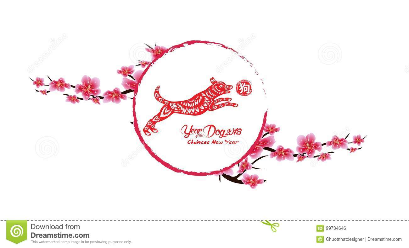 sakura flowers background cherry blossom isolated white background chinese new year 2018 hieroglyph