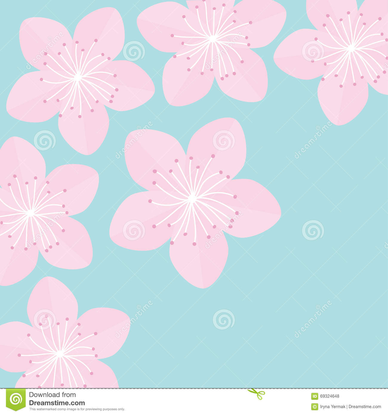 Sakura Flowers. Japan Blooming Cherry Blossom Blue Background Flat ...