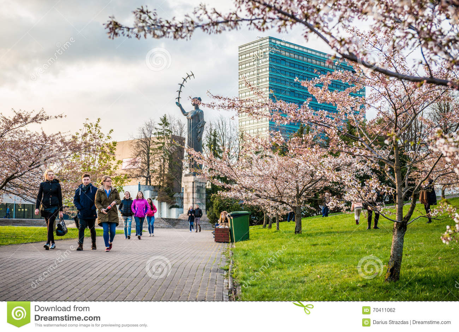 sakura park and croud of people vilnius editorial photography