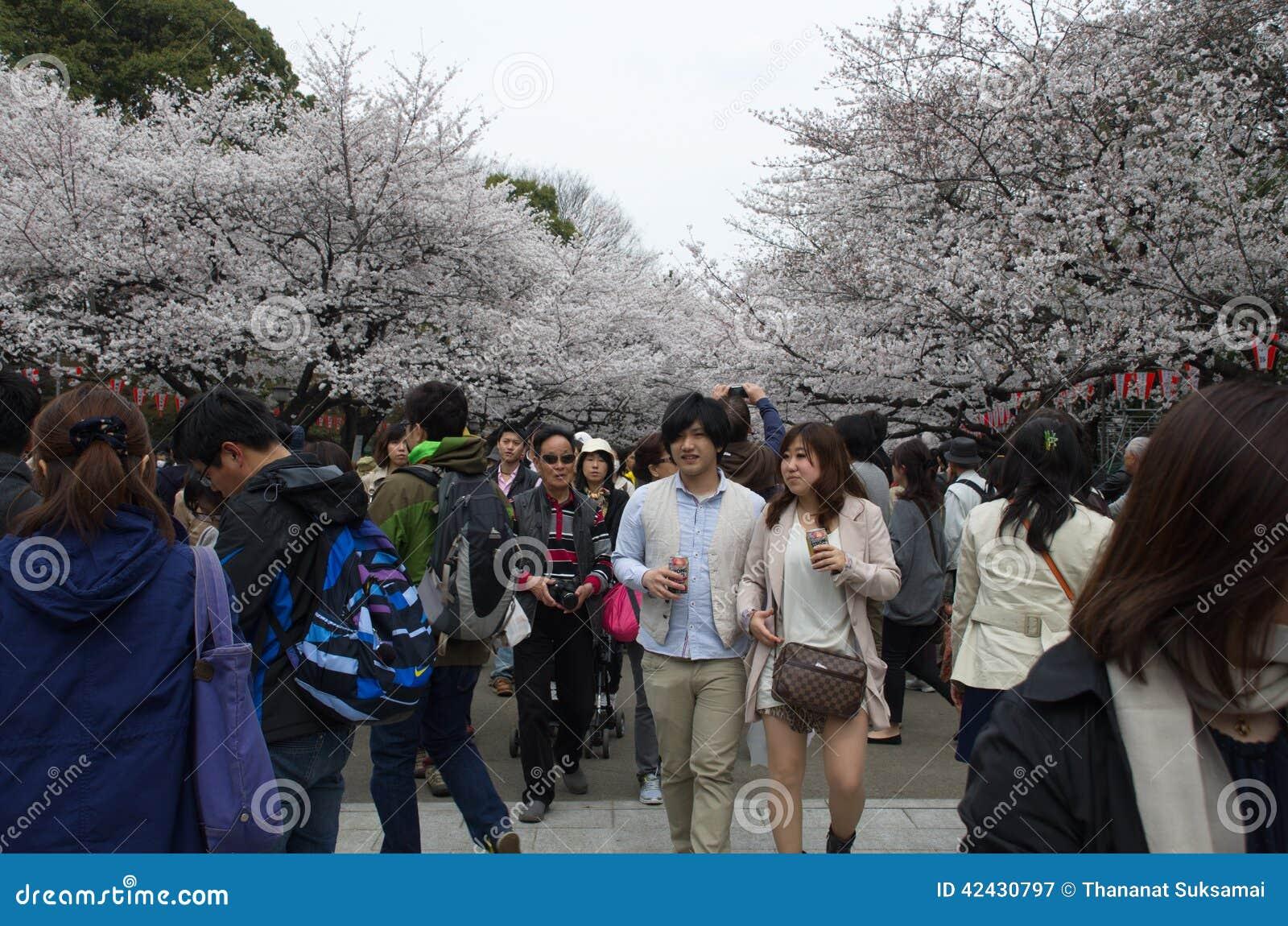 Sakura Season en el parque de Ueno