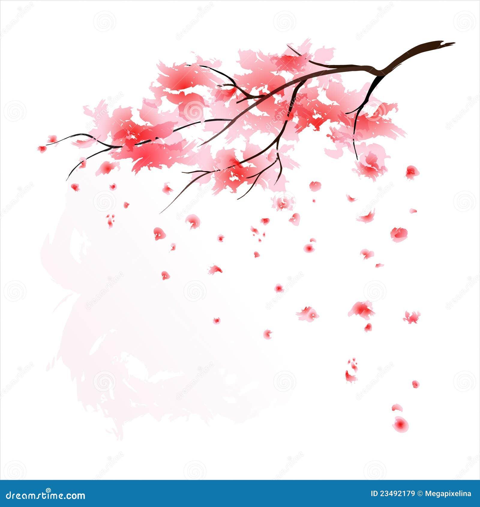 Sakura watercolour