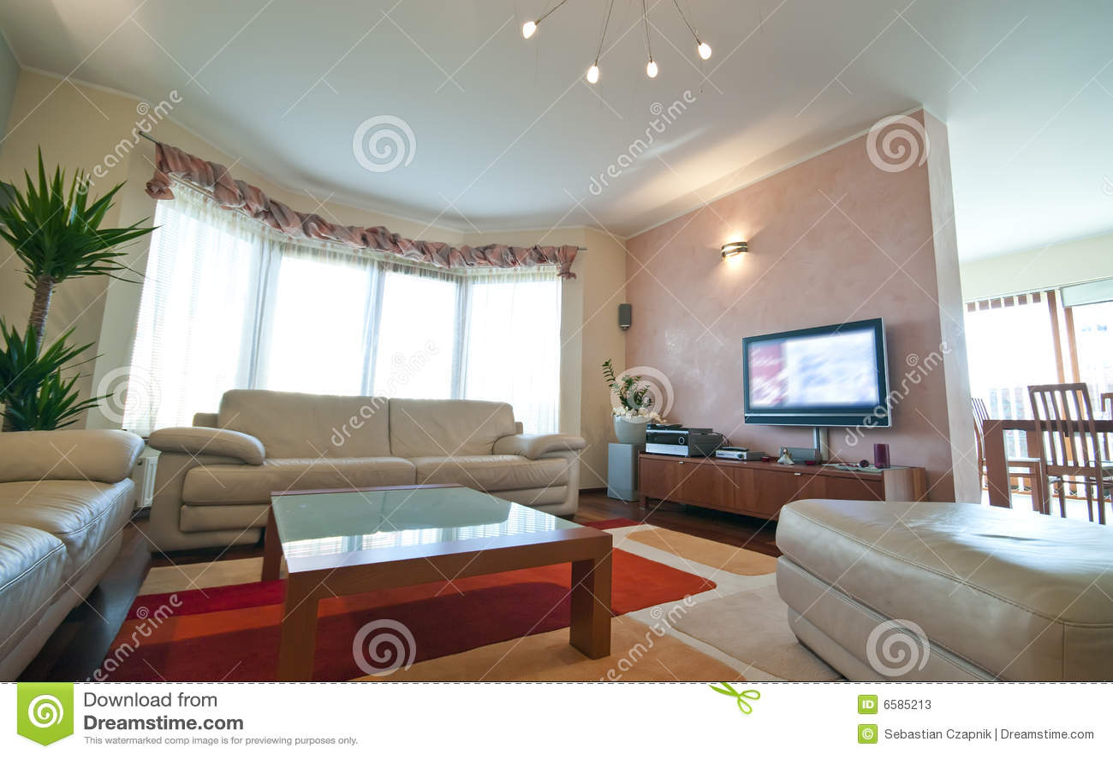 Sala de estar lujosa fotos de archivo imagen 6585213 for Casas modernas interiores salas
