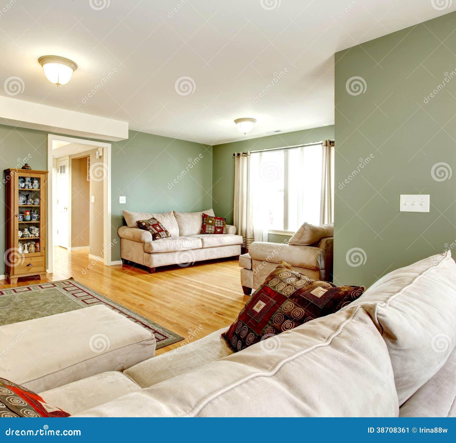 Sala De Estar Verde Con Una Tv Imagen De Archivo Imagen De Pared  -> Sala De Tv Verde