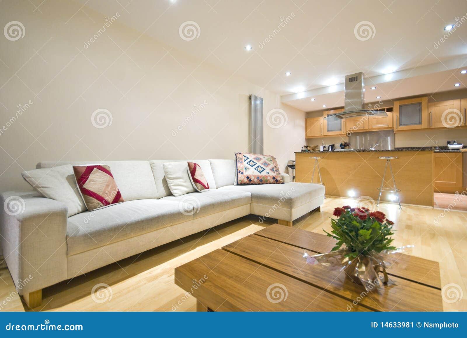 Sala de estar y cocina abiertas modernas del plan imagen for Sala de estar y cocina