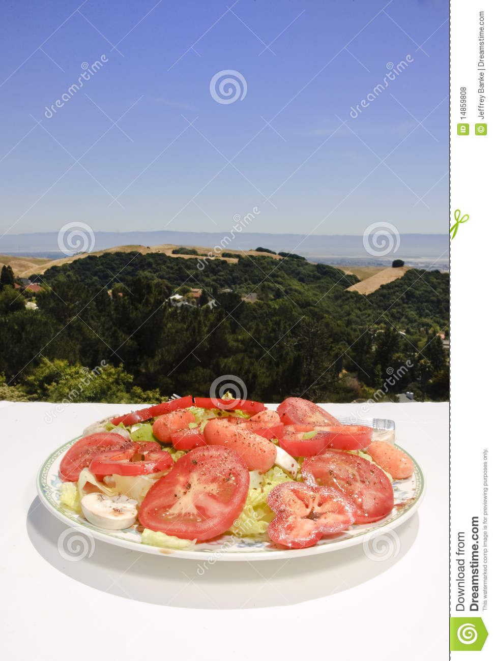 Download Salad in the sun stock photo. Image of full, health, delicious - 14859808
