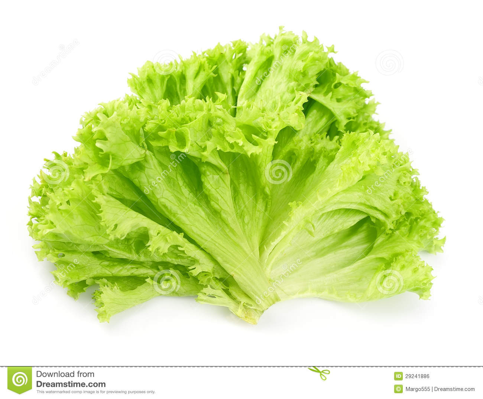 Download Salada da alface foto de stock. Imagem de saúde, ingrediente - 29241886