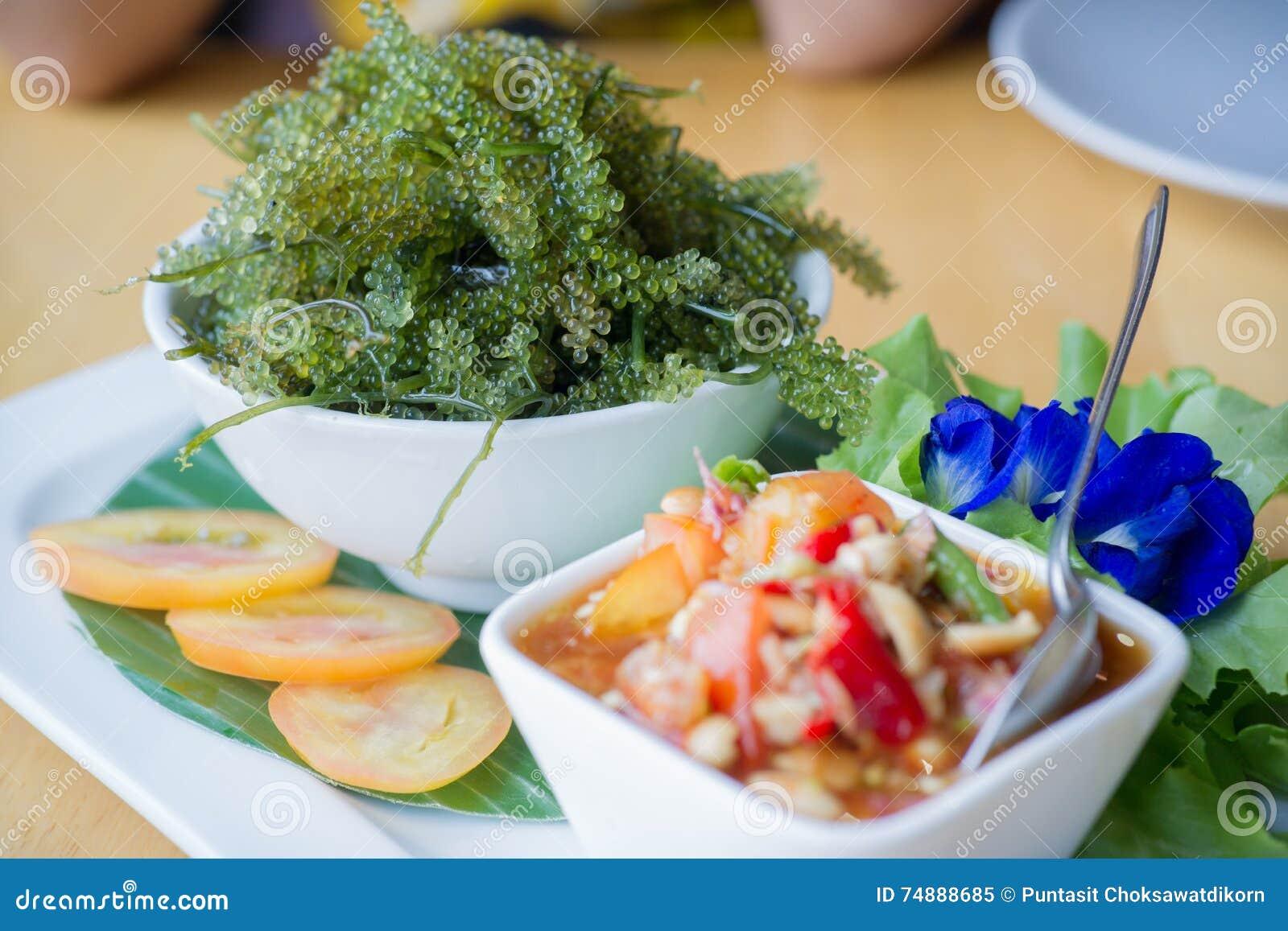 Salada da alga