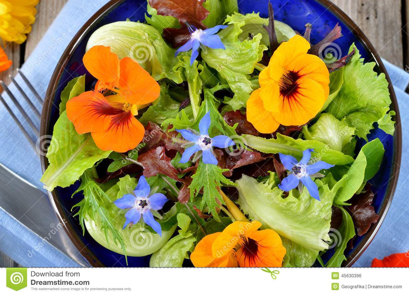 salade avec les fleurs comestibles nasturce bourrache photo stock image 45630396. Black Bedroom Furniture Sets. Home Design Ideas