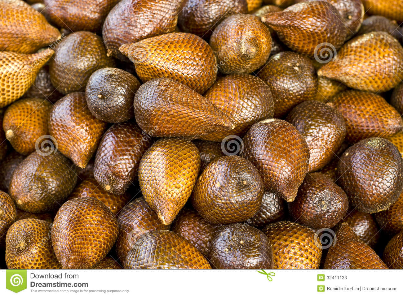 Salak stock image  Image of mineral, hard, fruits, indonesian - 32411133
