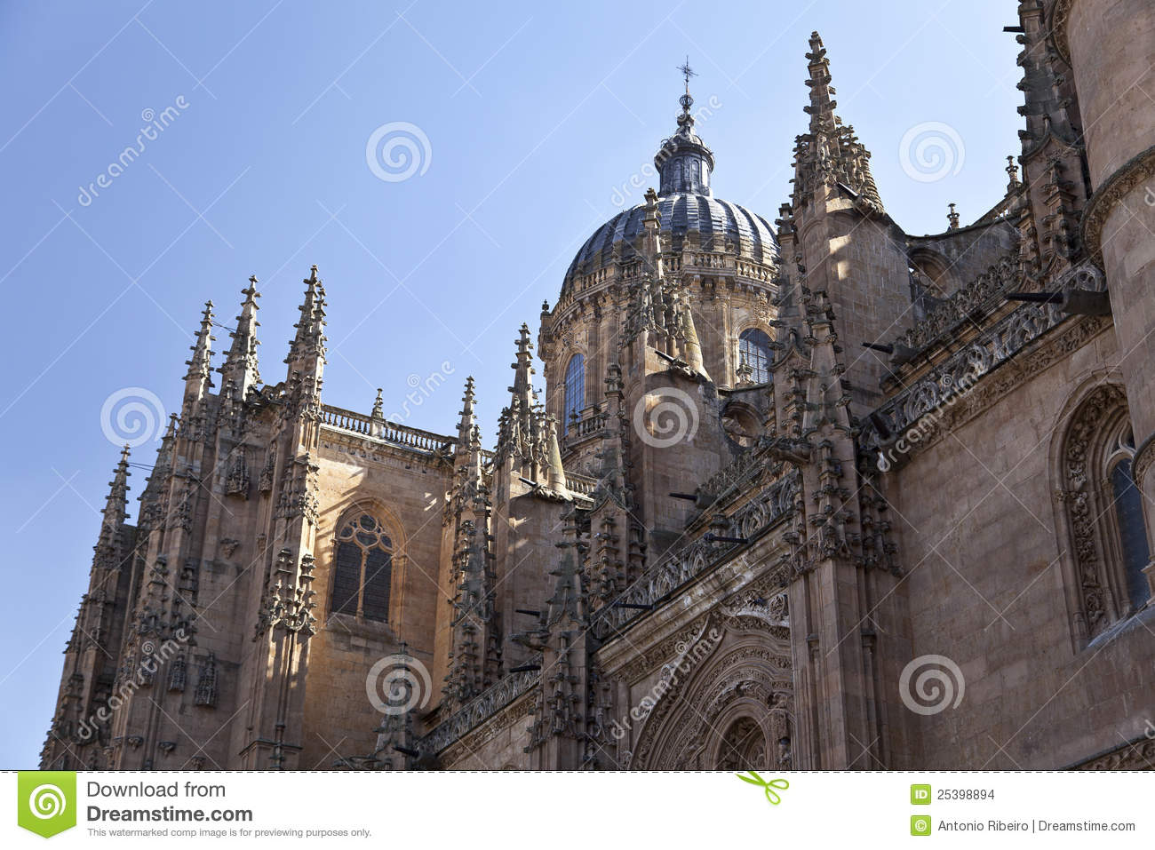 Salamanca New Cathedral (Catedral Nueva) Stock Images ...