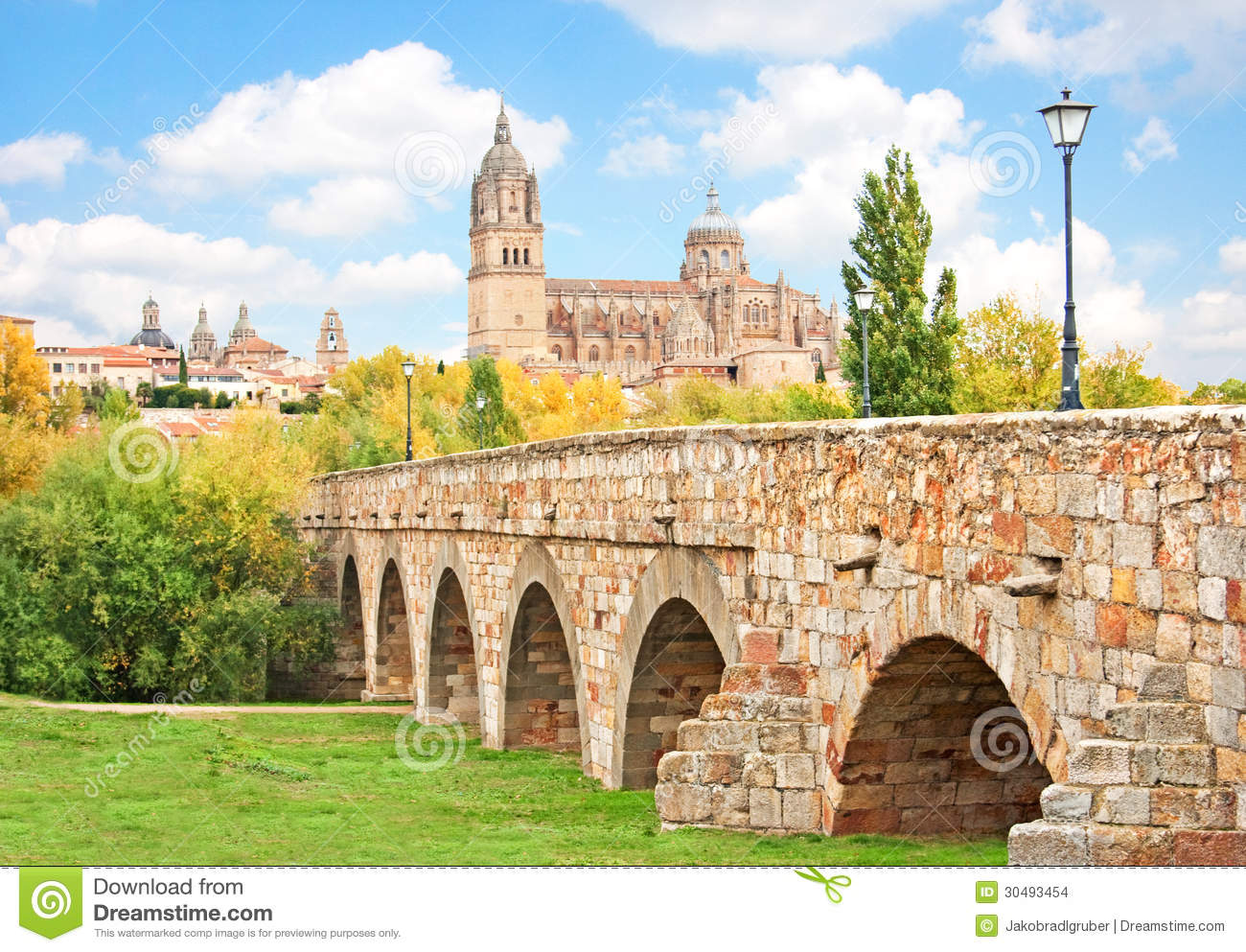 Salamanca skyline with new cathedral and roman bridge - On salamanca ...