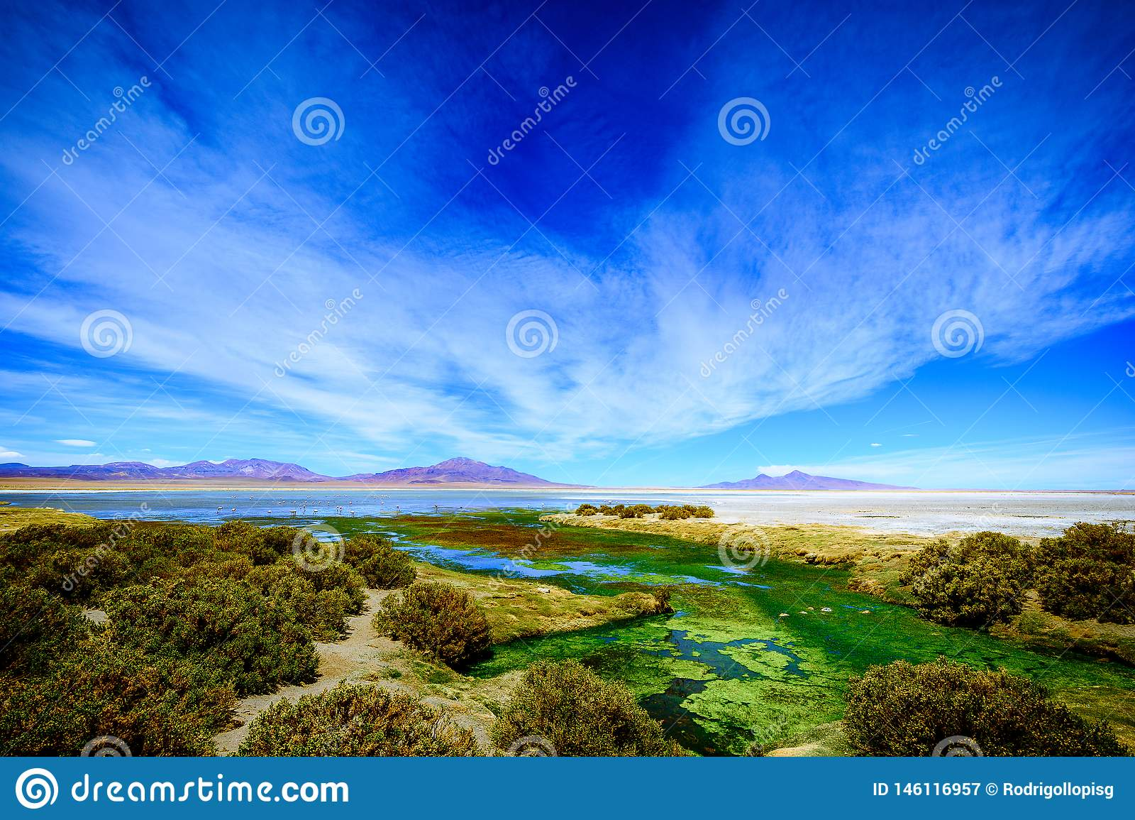 Salar de Tara, San Pedro Atacama, o Chile