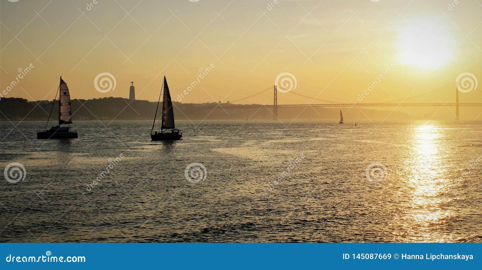 Sale boats sailing near the shores of Lisbon