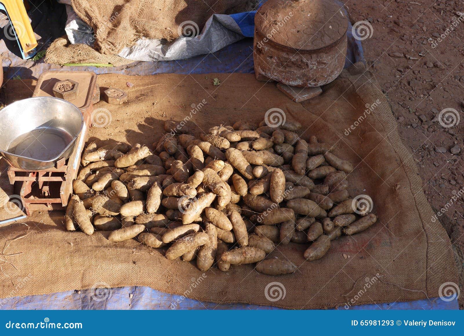 sale of exotic hairy potato stock image - image of potatoes, tubers