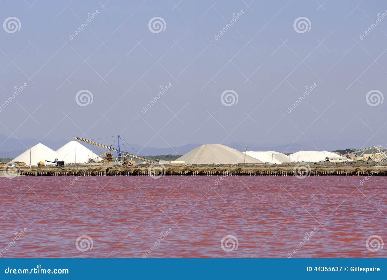Sale marino di funzionamento Aigues-Mortes salino del sito