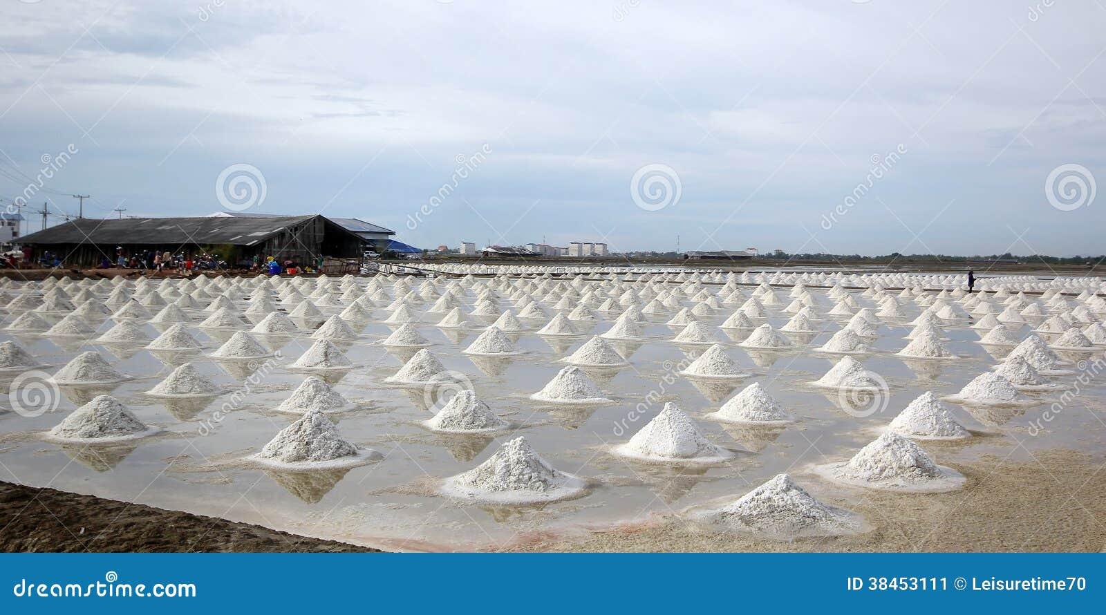 Sale marino nell azienda agricola del sale