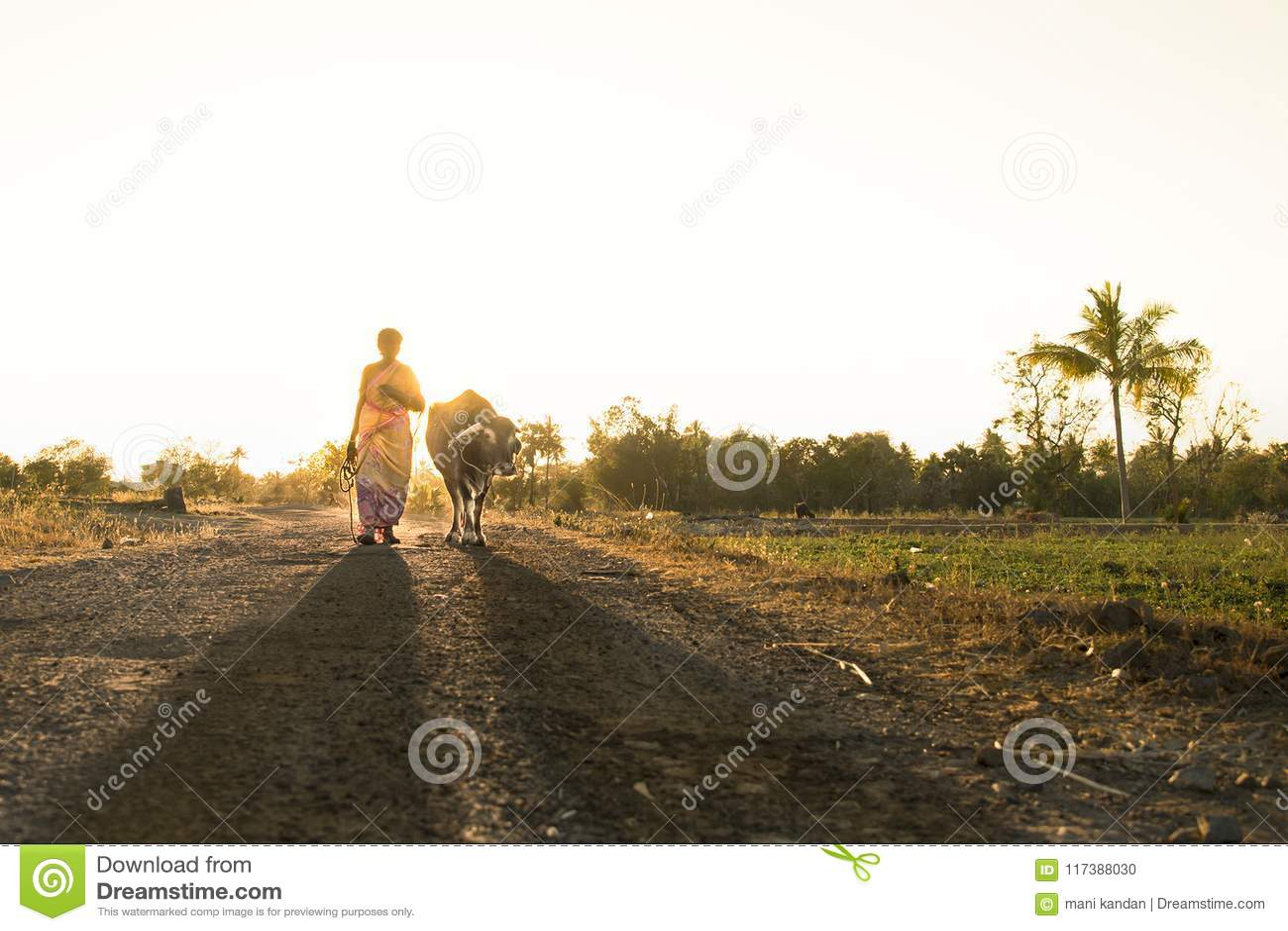 Salem-Straßenphotographieindien-Tamil nanu Dorfphotographie