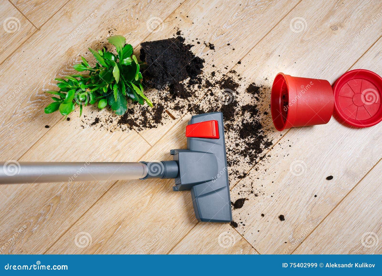 Saleté nettoyante à l aspirateur du plancher